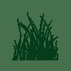 noun_grass_655754